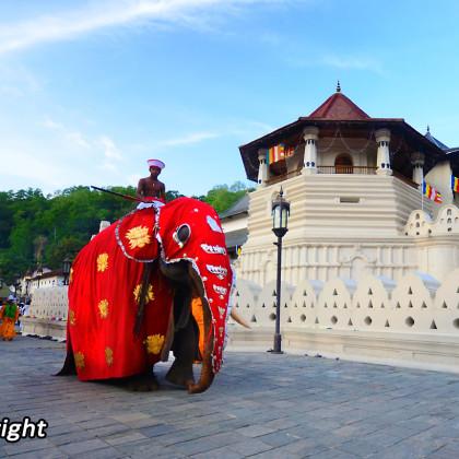 srilanka3